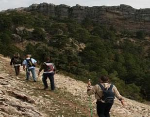 Paseando por los Senderos de Jaén